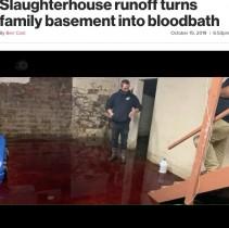 """【海外発!Breaking News】「まるでホラー映画」食肉処理場からの排水で自宅地下室が""""血の海""""に(米)"""