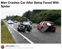 【海外発!Breaking News】「蜘蛛が車内に!」焦ったドライバー、退治しようとして衝突事故(英)