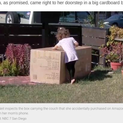 【海外発!Breaking News】「幼児にスマホを持たせる時は気を付けて」と母親 アマゾンから3人掛けソファーが届く(米)