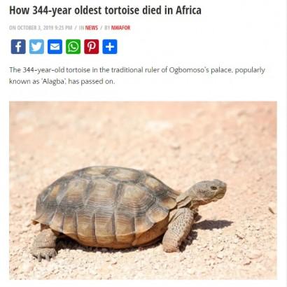 【海外発!Breaking News】宮殿で飼われていたカメ「344歳」で死ぬ(ナイジェリア)