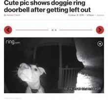 【海外発!Breaking News】飼い主にうっかり締め出された犬、夜中に帰宅してドアホンを鳴らす(米)<動画あり>