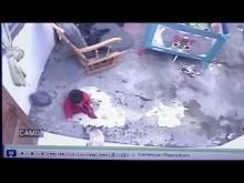 """【海外発!Breaking News】階段から転げ落ちる寸前の1歳児を守った""""ヒーロー猫""""(コロンビア)<動画あり>"""
