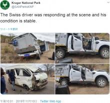 【海外発!Breaking News】ミニバスタクシーと衝突したキリン、対向車線のサファリカーの上に倒れて運転手が死亡(南ア)