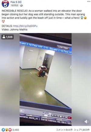 【海外発!Breaking News】エレベーターで宙吊り寸前の犬を救った男性「無我夢中だった」(米)<動画あり>