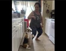 【海外発!Breaking News】ノリのいい曲に合わせて踊るビーグル犬が注目集める(米)<動画あり>