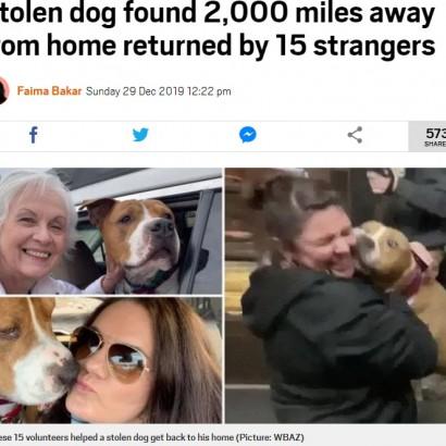 【海外発!Breaking News】盗まれた犬 ボランティアの思いやりリレーで3200キロを旅し飼い主のもとへ(米)<動画あり>