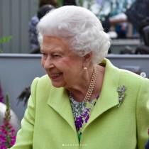 【イタすぎるセレブ達】エリザベス女王、軽い風邪で公務を欠席 心労が重なったことも原因か