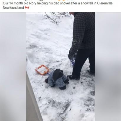 【海外発!Breaking News】雪かき中の1歳児、地面に頭を突っ込む姿で人々を笑顔に(カナダ)<動画あり>