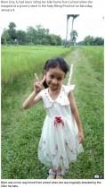 【海外発!Breaking News】帰宅途中の6歳女児、オオスズメバチの群れに襲われ死亡(カンボジア)