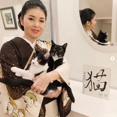 """【エンタがビタミン♪】藤あや子 """"猫愛""""溢れすぎて令和2年2月2日を「スーパー猫の日」に"""