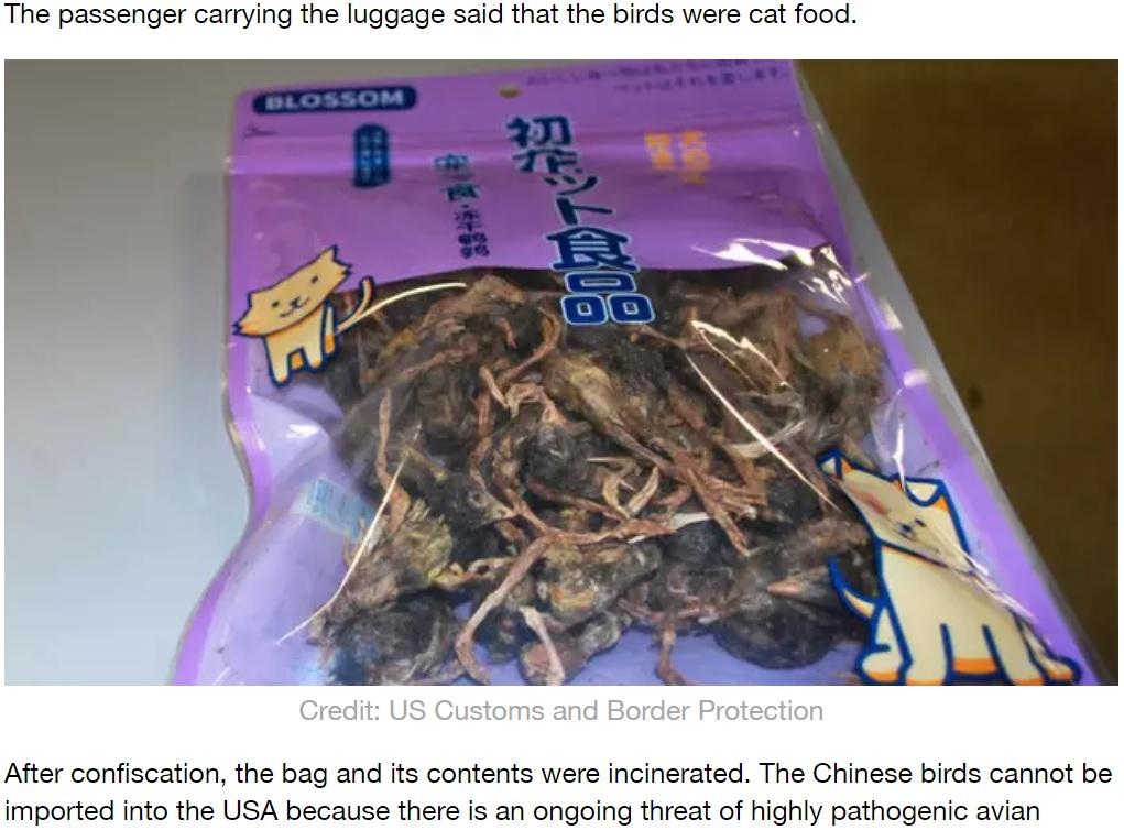 死んだ鳥が入ったパッケージ(画像は『LADbible 2020年2月11日付「US Airport Officials Confiscate Bag Of Dead Birds From Chinese Passenger」(Credit: US Customs and Border Protection)』のスクリーンショット)