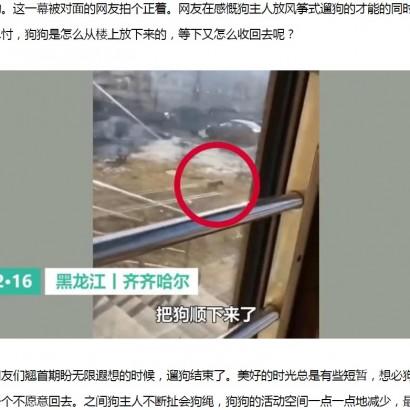 【海外発!Breaking News】新型肺炎で自宅隔離された住民、2階窓から飼い犬を吊るして散歩(中国)<動画あり>