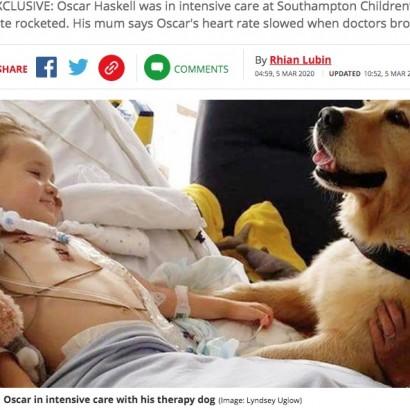 【海外発!Breaking News】難病で死の淵をさまよった男児、セラピードッグによって劇的に回復(英)
