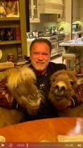 【イタすぎるセレブ達】アーノルド・シュワルツェネッガー(72)ロバとポニーとの隔離生活を楽しむ「とびきりの笑顔を見ておくれ!」