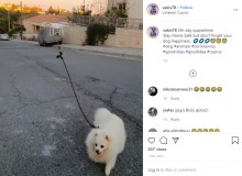 【海外発!Breaking News】封鎖された都市で犬の散歩をドローンに任せた飼い主(キプロス)<動画あり>