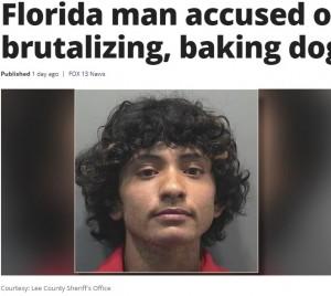 【海外発!Breaking News】封鎖で増加する虐待 24歳男が犬をオーブンで焼いて逮捕(米)