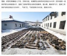 【海外発!Breaking News】中国で密猟者ら27人を逮捕 野生動物の死骸13000体超を警察が押収