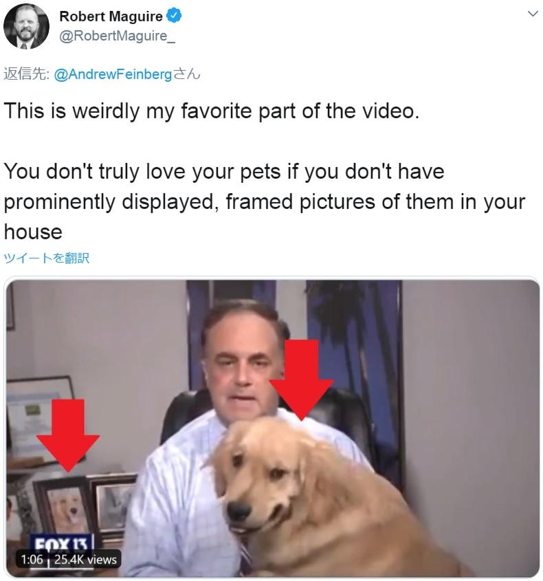 写真立てにもゴールデン・レトリバーが!(画像は『Robert Maguire 2020年5月1日付Twitter「This is weirdly my favorite part of the video.」』のスクリーンショット)