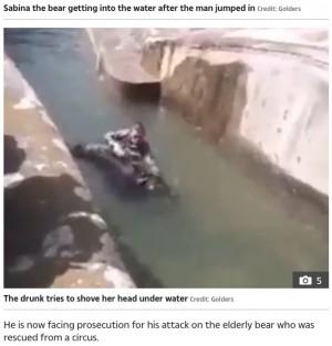 【海外発!Breaking News】動物園の檻に乱入した男、クマを溺死寸前に(ポーランド)<動画あり>