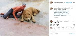 イヌの作品(画像は『Andoni Bastarrika(Artista) 2019年8月28日付Instagram「AKITA INU Autor: Andoni Bastarrika」』のスクリーンショット)
