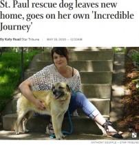 【海外発!Breaking News】「大好きな女性に会いたい」97日かけて里親のもとへと旅した犬(米)<動画あり>