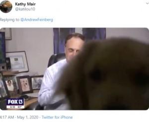 【海外発!Breaking News】自宅から天気予報を伝えていたキャスター 飼い犬に画面を乗っ取られる(米)<動画あり>