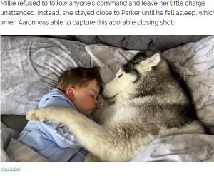 【海外発!Breaking News】「一緒に寝たい!」2歳児に添い寝する飼い犬が超キュート(英)<動画あり>