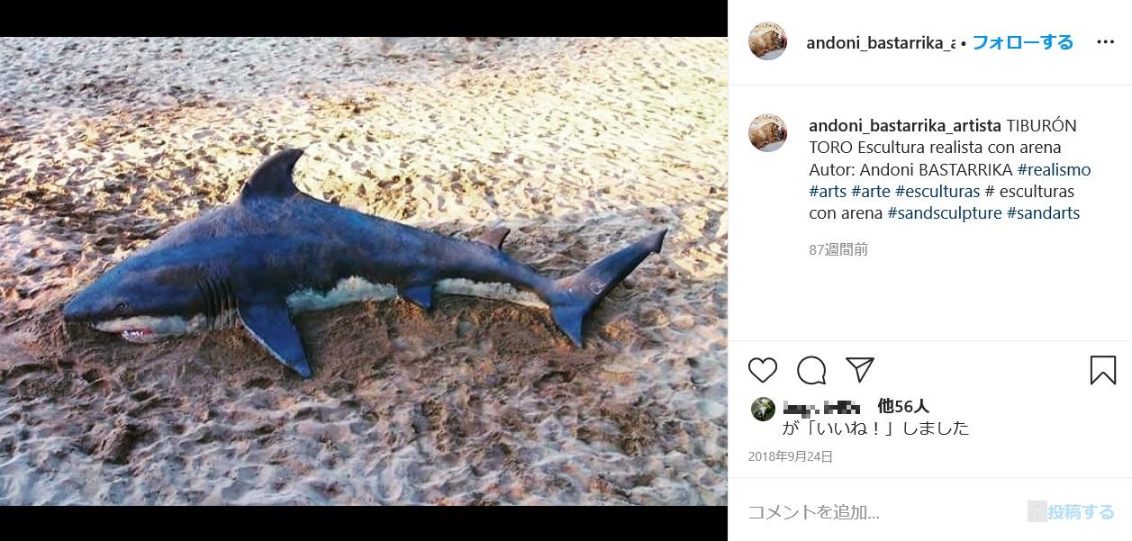 サメの作品(画像は『Andoni Bastarrika(Artista) 2018年9月24日付Instagram「TIBURON TORO Escultura realista con arena」』のスクリーンショット)