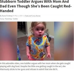 【海外発!Breaking News】頑固な1歳児、犬の餌を「触ってない」必死の訴えに思わず笑み(米)<動画あり>