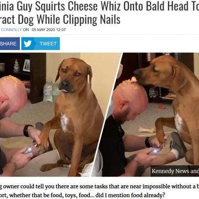 【海外発!Breaking News】爪切りが怖い愛犬のため 飼い主の頭にチーズ 最も平和的な作戦が大成功!(米)<動画あり>