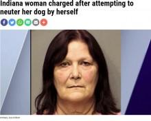 【海外発!Breaking News】輪ゴムで犬の去勢を試みた女、動物虐待容疑で逮捕「お金がなかった」(米)