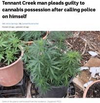 【海外発!Breaking News】「大麻が盗まれた」警察に通報した男、大量に栽培していたことが発覚し逮捕(豪)