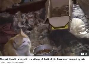 ネコやネズミがいる汚い部屋で暮らしていた親子(画像は『The Sun 2020年6月24日付「HOUSE OF HORRORS Russian mum 'forced her daughter to live off CAT FOOD while caged at her home for 26 years'」(Credit: Central European News)』のスクリーンショット)