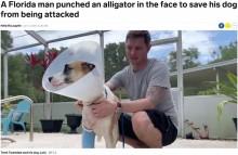 【海外発!Breaking News】飼い犬を守るため素手でワニと格闘した男性 川で綱引き状態になるも無事に救出(米)