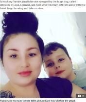 母親がドラッグパーティ中、置き去りにされた9歳息子が犬に襲われ死亡(英)