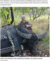 【海外発!Breaking News】ハンターに仕留められた瀕死の水牛、最後の力を振り絞り反撃に出る(豪)