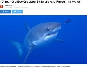 【海外発!Breaking News】「ボートの上にいたのに」サメが10歳少年を襲う 豪でサメ被害続出の原因とは?