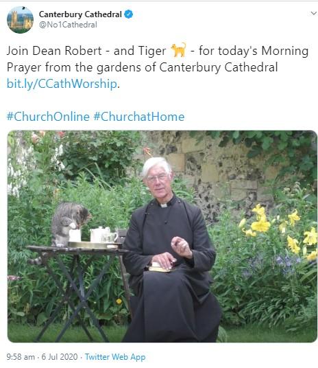 リモート礼拝の配信中、堂々とミルクを舐める猫(画像は『Canterbury Cathedral 2020年7月6日付Twitter「Join Dean Robert - and Tiger - for today's Morning Prayer from the gardens of Canterbury Cathedral」』のスクリーンショット)