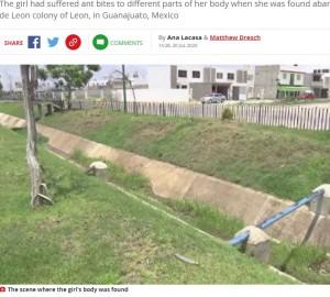 【海外発!Breaking News】蟻の巣の近くに遺棄された新生児、蟻に襲われて死亡か(メキシコ)