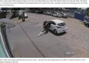 【海外発!Breaking News】道路に捨てられた3本足の犬 新しい家族のもとで幸せに(ブラジル)<動画あり>