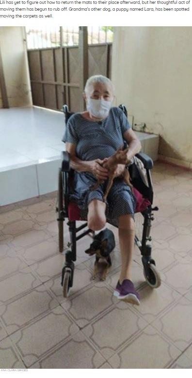 愛犬2匹と一緒のアナさんの祖母(画像は『The Dodo 2020年7月31日付「Sweet Dog Always Moves Rugs To Make Way For Grandma's Wheelchair」(ANA CLARA SIMOES)』のスクリーンショット)