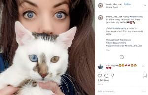 飼い主のマリアさんとボウイ(画像は『Bowie The Cat 2020年5月4日付Instagram「Happy #mothersday to all the crazy cat mums out there」』のスクリーンショット)