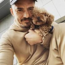 【イタすぎるセレブ達】オーランド・ブルームが悲痛な呼びかけ 愛犬が行方不明に「僕の心はもう崩壊しそう」
