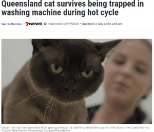【海外発!Breaking News】洗濯機で昼寝をした猫 シーツと一緒に洗われるも無事回復(豪)
