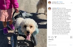 犬用の車椅子を使うコーラ(画像は『Zach Skow 2020年6月16日付Instagram「Every morning, depression tells me I'm not trying hard enough to feel better」』のスクリーンショット)