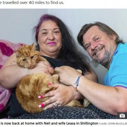 【海外発!Breaking News】元の飼い主に「どうしても会いたい」64キロを6週間かけて旅した猫(英)