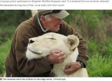 【海外発!Breaking News】自然保護活動家、5年間育ててきた白ライオンに襲われ死亡(南ア)<動画あり>