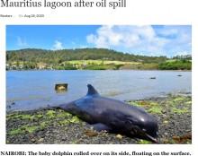 【海外発!Breaking News】油まみれの子イルカを必死に助けようとする母イルカ モーリシャス島で捉えた悲しい映像<動画あり>