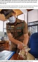 【海外発!Breaking News】動物を使った麻薬取引が横行 刑務所内へ猫が薬を運び込む(スリランカ)