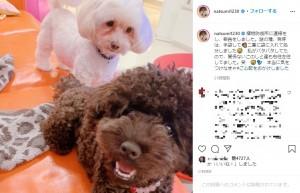 謎の種の処分を報告、「本当に気をつけなきゃ」と小川菜摘(画像は『小川菜摘 2020年7月31日付Instagram「植物防疫所に連絡をし、報告をしました。」』のスクリーンショット)